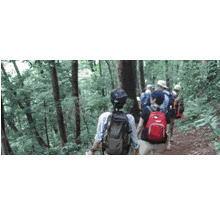 10月のハイキングガイドツアー 「秋を先取り、高尾山の歴史と自然」
