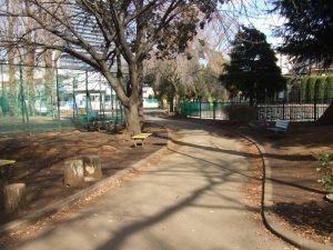 子安公園で朝市