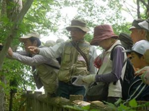 東大和公園の自然観察会