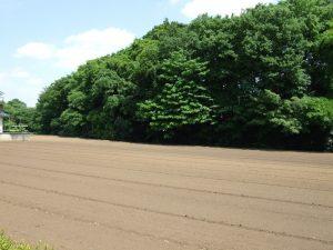 環境シンポジウム&ワークショップ「武蔵野の水源の森を未来へつなごう」