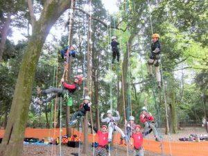 ツリークライミングで木登り体験