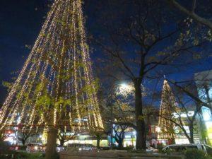 国立市内クリスマスイルミネーション