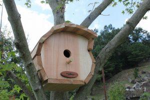 上柚木公園に巣箱をかけよう