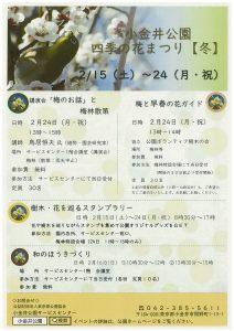 小金井公園四季の花まつり【冬】