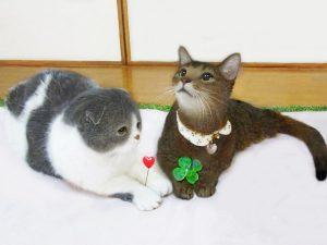 むさしの猫セミナー 猫とずっとしあわせに暮らすには