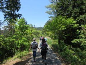 日本フットパス協会設立10周年記念「歩こう・ニッポン!歩こう・まちだ!~地域の小径(こみち)&暮らしの道でふれあうフットパス~」