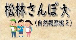 松林さんぽ(自然観察編2)
