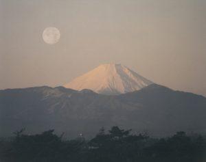 企画展 岡田紅陽「富士望景武蔵野から」