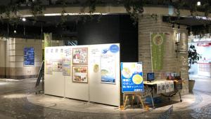環境にやさしい買い物キャンペーンのパネル展示