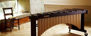 マリンバと世界の民族楽器