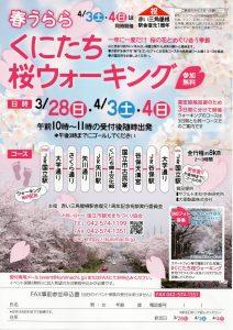 春うらら くにたち桜ウォーキング