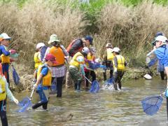府中水辺の楽校「多摩川で水辺の生き物を観察しよう」